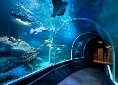 Event Aquarium